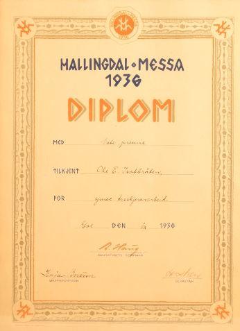 diplom-kaja-bruun