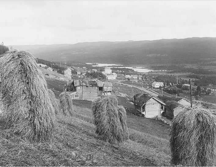 Hallsteinsgard