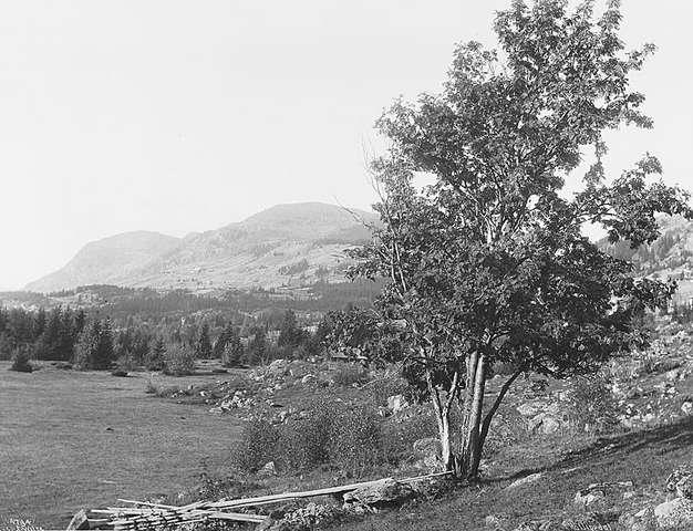 1913 4