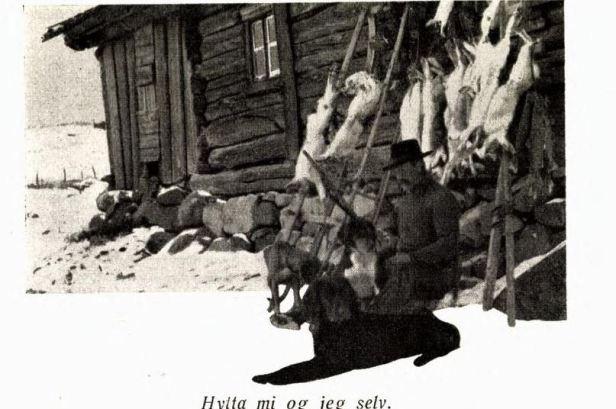 brrun hytta